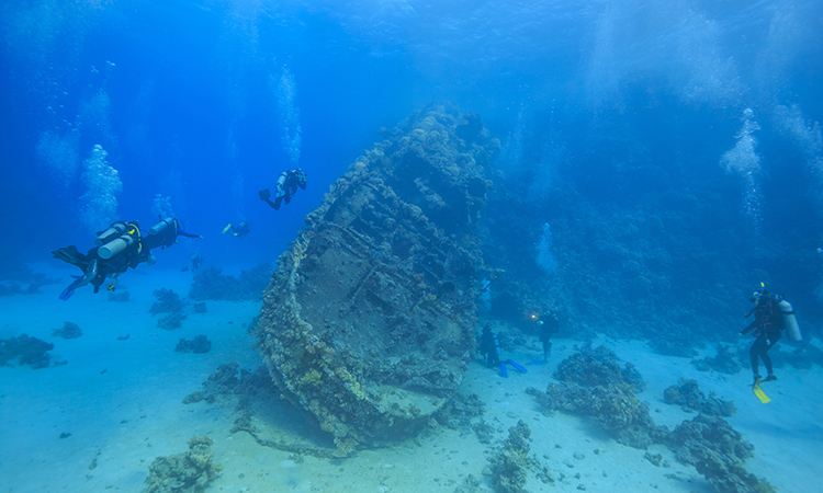 Scuba Diving Abu Tair, Cable Wreck, Jebel Al Lith